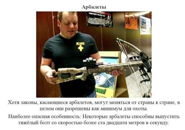 share.setitagila.ru/images/9484831377753108_11.jpg
